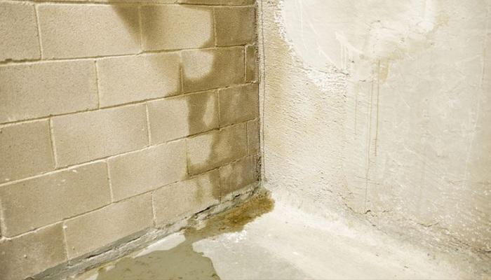 влага на стене