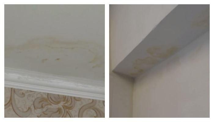 Ржавые пятна на потолке и стене