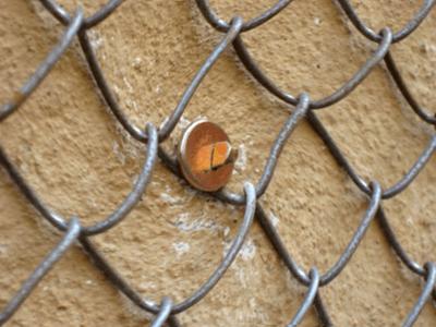 особенности крепления сетки рабицы