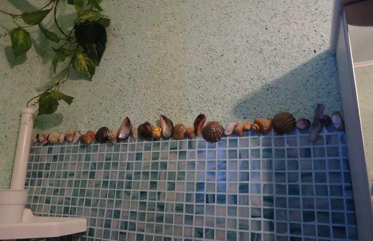 разделение зон в ванной комнате